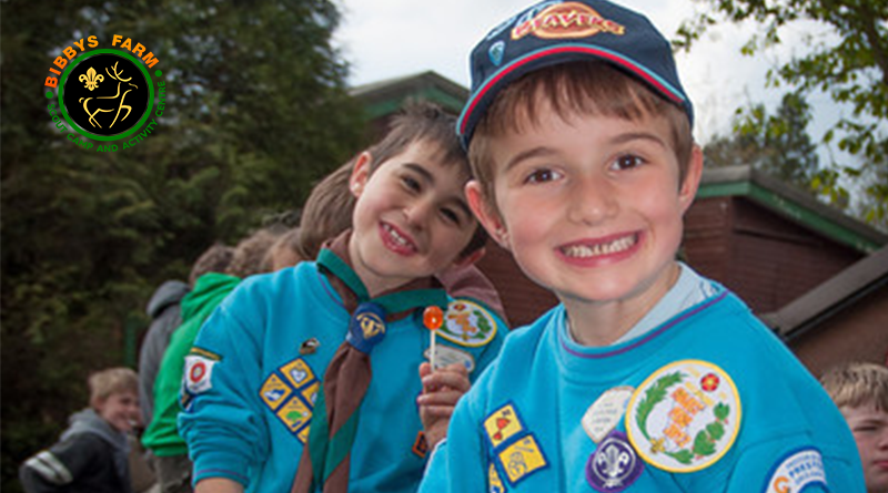 County Beaver Scout Camp
